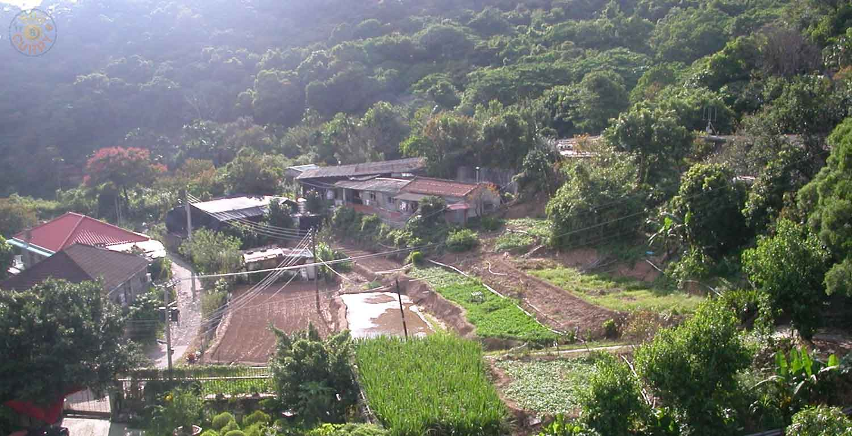 Gärten/Felder in der Nähe unserer Hauses